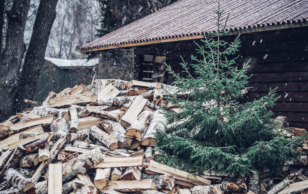 """""""Eco Baltia vide"""" nodrošinās vairākas iespējas svētku eglīšu izvešanai"""